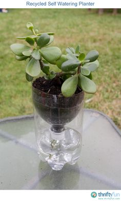 Recycled Self Watering Container for Indoor Plants-This easy recycled planter would be a great summer craft for kids but is also a very effective way to keep your houseplants from drying out.