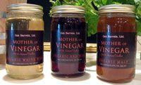 Mother of Vinegar- Make your own vinegar from old wine!