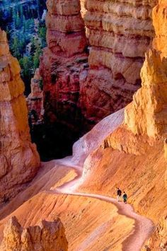 Hikers on the trail in Bryce Canyon National Park, Utah