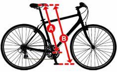 Good Bike Fit Fundamentals – GoBiking.ca