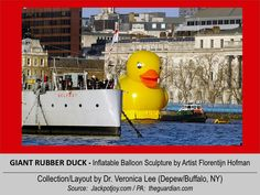 GIANT RUBBER DUCK (50' Tall) [2012].12/11 @ ENGLAND – London: River Thames --- Passing HMS Belfast   //  inflatable balloon Sculpture floating around the world to spread Peace/Goodwill