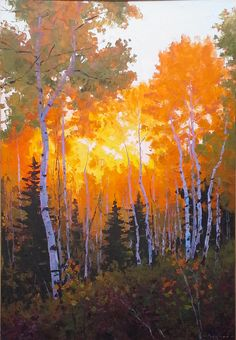 Golden Forest by Douglas Aagard Impressionist Landscape, Watercolor Landscape, Landscape Art, Landscape Paintings, Landscape Illustration, Illustration Art, Traditional Paintings, Environmental Art, Tree Art