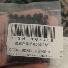 Vova   100 pcs anão sementes de bananeira mini bonsai planta exótica rara frutas jardim decoração Bonsai Planta, Plantas Bonsai, Banana Seeds, Cards Against Humanity, Mini, Great Gifts, Seeds, Bucket Lists, Garden