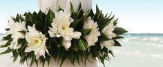 Μπομπονιέρες γάμου   Στέφανα   Προσκλητήρια: μπομπονιερες γαμου κουτια Photo And Video, Plants, Plant, Planets