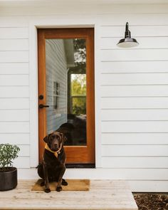 Nothing says welcome home quite like friendly faces and great lighting! 💡🐶 #Repost @barnlight 📸 @saraparsons #barnlight #mybarnlight #barnlightelectric #frontdoordecor #frontporchdecor #curbappeal #farmhouseexterior #barnlightau #AustralianMade #lighting #australianmadelighting Gooseneck Lighting, Kangaroo Logo, Barn Light Electric, Green Environment, Barn Lighting, How To Make Light, Front Door Decor, Entry Doors, Green And Gold
