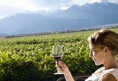 ¿Por qué es imposible imitar un vino?