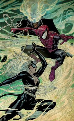 SPIDER-MAN v. THE BLACK CAT by Sara Pichelli