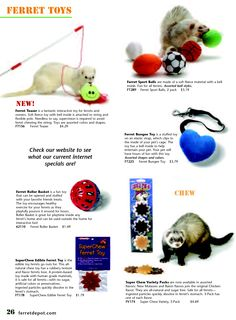 Any ferret toys for Po and Wewe. Ferrets Care, Baby Ferrets, Cute Ferrets, Ferret Toys, Pet Ferret, Pet Toys, Classroom Pets, Baby Animals, Cute Animals