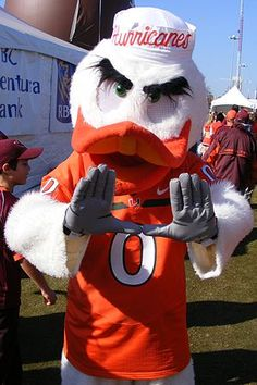Miami Hurricanes Football Guide is the source for the Miami Hurricanes mascot, Sebastion the Ibis, and the University of Miami traditions. Miami Hurricanes Mascot, University Of Miami Hurricanes, Hurricanes Football, Miami Football, College Football Teams, Football And Basketball, Sports Teams, Sports Logos, Alabama Football