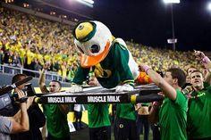 Duck push-ups