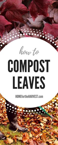 Tutorial - How to Compost Leaves (Plus Free Printable!). Composting leaves is a great way to clean up your yard in the fall while also making your own organic plant food. | Home for the Harvest