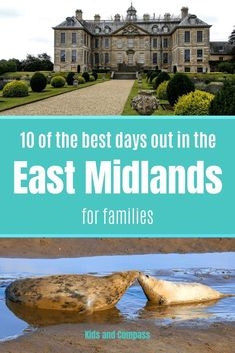 The East Midlands is a large area of the UK, with plenty of things to do for families. It can be hard to know where to visit in the East Midlands so we've done the hard work for you. Read our top 10 of the best days out in the East Midlands! Days Out With Kids, Family Days Out Uk, Bucket List Life, Staycation, Where To Go, Day Trips, Family Travel, Travel Inspiration, Hard Work