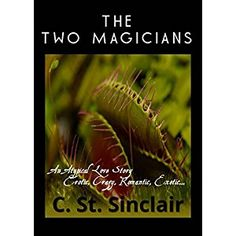 #BookReview of #TheTwoMagicians from #ReadersFavorite - https://readersfavorite.com/book-review/the-two-magicians  Reviewed by Divine Zape for Readers' Favorite  The Two Magicians: An Atypical Love Story by C. St. Sinclair is a sizzling blend of romance and erotica, but the erotic aspect of the story is so loud it could play down some of the beautiful elements of the narrative. The reader is introduced to April and Luke and their unusual encounter at a bar, and how Luke's curiosity about…
