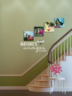 Butterfly Collection  Come Fly Away  home by NatureImagesByDesign, $240.00