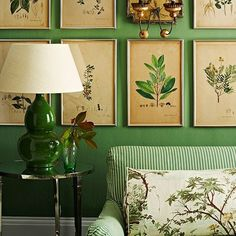 Green living room with framed botanical prints Looking for spring decorating ideas? Be inspired by these botanical room design ideas, from leafy wallpapers to insect-inspired fabrics Living Room Green, Bedroom Green, Green Rooms, Living Room Decor, Bedroom Decor, Green Walls, Decor Room, Bedroom Furniture, Bedroom Ideas