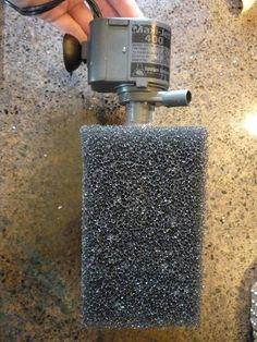 DIY Sponge Filter w/ Powerhead