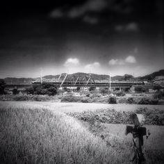 案山子 / Scarecrow - @ue_mac- #webstagram My Photos