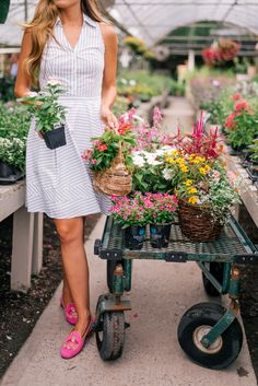 Gal Meets Glam Garden Prep -Express dress c/o and Stubbs & Wootton loafers