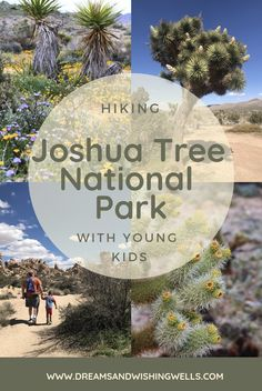 Joshua Tree National Park is a great place to visit with young kids! There are so many kid-friendly trails with some awesome scenery! Here are our favorites! California National Parks, National Parks Usa, Joshua Tree National Park, California Travel, Vacation Trips, Vacation Ideas, Family Vacations, Travel Usa, Travel Tips
