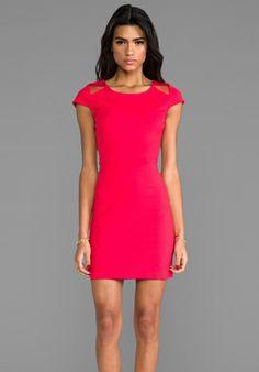 BB Dakota Edgemont Dress in Watermelon