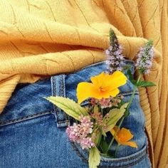 in need of a cute yellow sweater collection and some high waisted jeans - Gelb Yellow Sweater, Yellow Jeans, Mustard Sweater, Happy Colors, Mellow Yellow, Favorite Color, Pretty, Plants, Sunshine