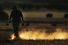 Australian farmer. They work bloody hard for us..........