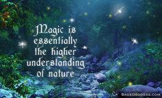 Magic is essentially the higher understanding of nature. #LifeQuotes