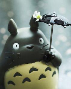 ひとつは欲しい。フィギュアのトトロ。 雨ってうんざりしちゃうけど、トトロが喜ぶからまぁいっか!って気分になっちゃいますね。