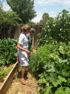 The best way to learn how to garden — THE SIMPLE FARM LIFE