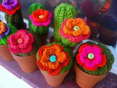 crochet flowers in pots-no pattern for these but there are cactus and flower patterns on the board Crochet Diy, Cactus En Crochet, Crochet Amigurumi, Crochet Home, Love Crochet, Beautiful Crochet, Crochet Flowers, Cat Amigurumi, Knitting Projects