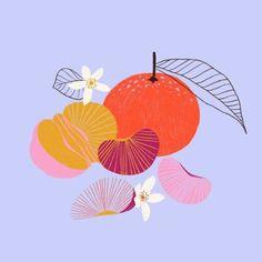 fruit illustration by Marisol Ortega Art And Illustration, Food Illustrations, Mode Portfolio Layout, Arte Pop, Fruit Art, Arte Floral, Clipart, Art Inspo, Design Art
