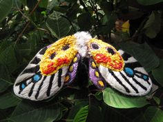 https://flic.kr/p/p8W9By | Embroidered Moth