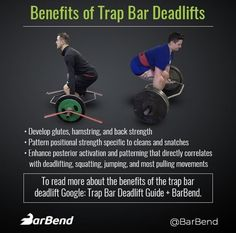 a510ae030226ad 95 Best BarBend Infographics images