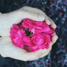 لا قيمة للمشاعر في غياب من نحب !!!