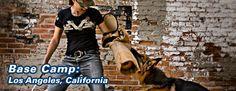 Amazing Dog Training Session with Jennifer McCarthy!