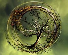 Love this to represent a tree of life