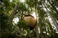 Hem Loft Unique tree house constructed by Joel... | The Khooll