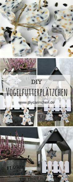 DIY bird food dumplings with cookie molds just do it yourself - basteln - Vogelhaus Organization Ideas For The Home Diy, Easy Crafts, Diy And Crafts, Diy 2019, Christmas Crafts, Christmas Decorations, Table Decorations, Food Decoration, L Wallpaper