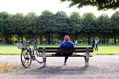 Single in den Herbst | Stadtbekannt Wien | Das Wiener Online Magazin Online Magazine, Outdoor Furniture Sets, Outdoor Decor, Picnic Table, Autumn, Picnic Tables, Outdoor Furniture