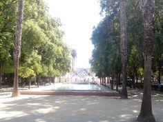 Fotografía del parque del Prado de San Sebastián de Sevilla en el que aparecen varios recursos turísticos que se dividen en recursos relacionados con la naturaleza y recursos relacionados con la cultura viva.