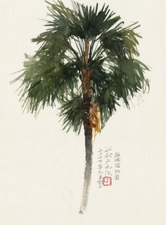 New Palm Tree Drawing Bamboo Ideas Watercolor Trees, Watercolor Landscape, Landscape Art, Watercolor Paintings, Watercolors, Tree Paintings, Pine Tree Silhouette, Silhouette Painting, Christmas Tree Wallpaper Iphone