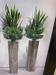 Gestecke Flower Bouquet Diy, Bloom, Flowers, Plants, Decorating Ideas, Plant, Royal Icing Flowers, Flower, Florals