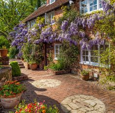 An ancient wisteria festoons 16th century Dipley Mill in Hampshire