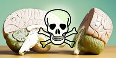 The Chemicals That Are Toxic To Our Brains: A Comprehensive Guide http://www.corespirit.com/chemicals-toxic-brains-comprehensive-guide/ &HCATS%