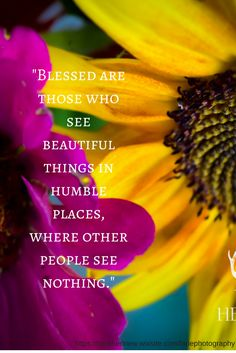 Blessed are those who see beautiful things in humble places, where other people see nothing. inspiring, beautiful life quote, photography, flowers, sunflower, quote