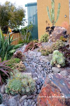 San Diego garden designer Michael Buckner positions rounded river rock on its side to suggest rapidly flowing water.