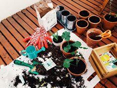 Le Simple: My private garden