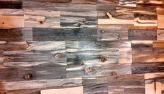 Sustainable Lumber Co Beetle Kill Pine Paneling Beetle
