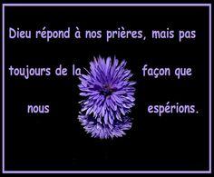 https://plus.google.com/+ClaudineMichau45  https://www.facebook.com/profile.php?id=100014401179851