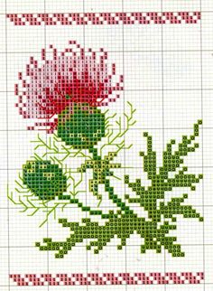 Thistle • 1/2 Coloured Chart